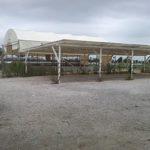 Il piazzale delle aste Nettuno